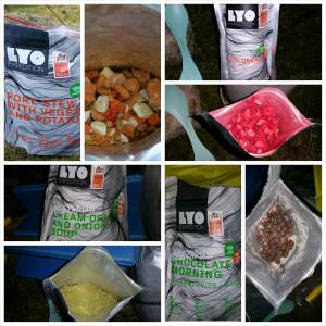 LYO Foods